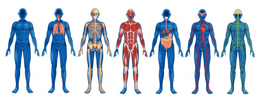 Quali sono le malattie più frequenti negli anziani?