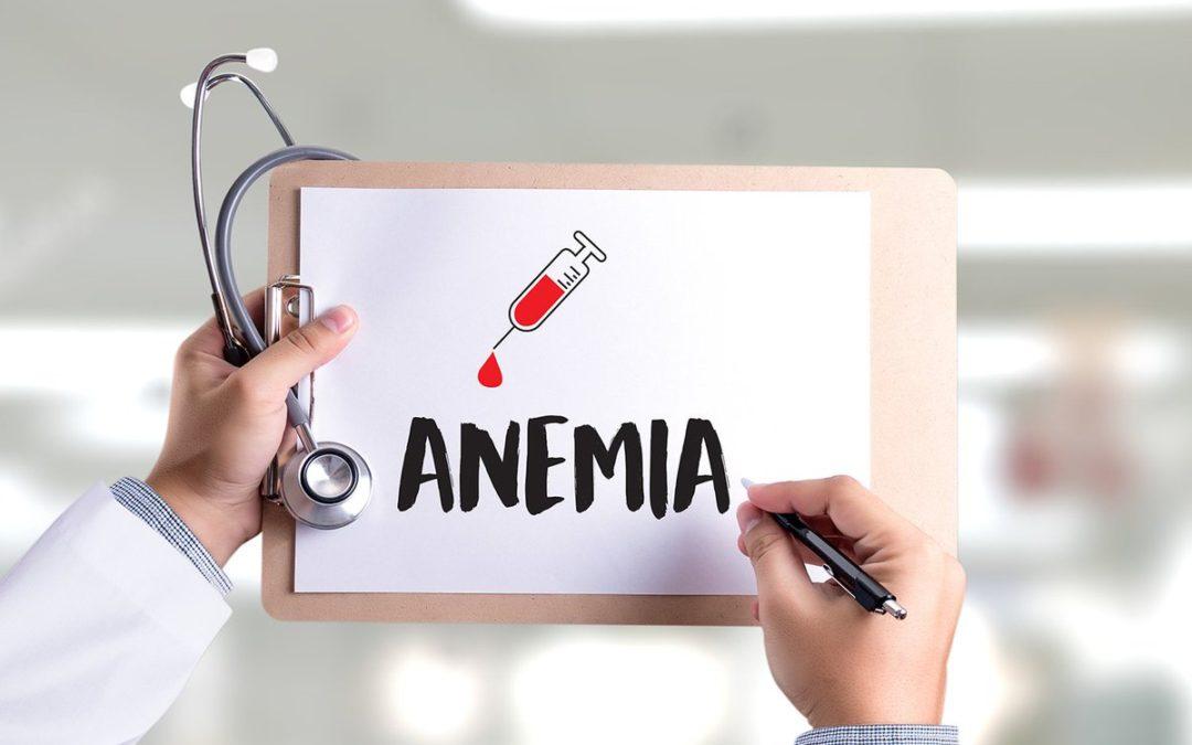 Anemia senile e declino funzionale, i nostri consigli